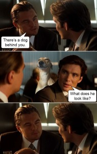leonardo-dicaprio-dog-squinting-inception-meme